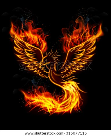 fire burning phoenix bird with