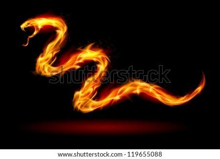 fire snake illustration on