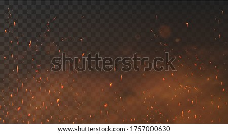Fire sparks background on a transparent background. Burning hot sparks, embers burning cinder and smoke flying in the air. Realistic heat effect with glow and sparks from bonfire. Flying up embers   Foto d'archivio ©