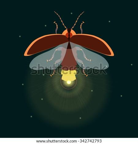 firefly bug logo design