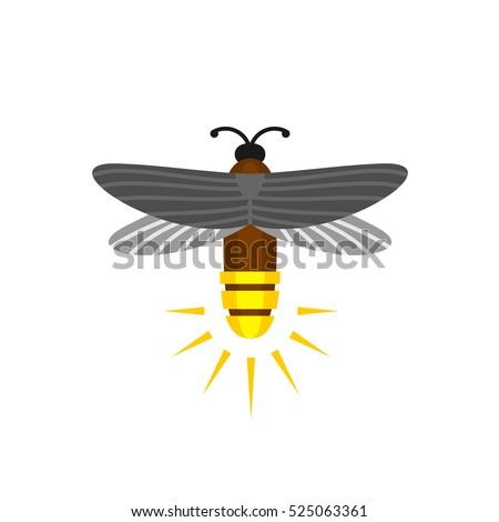 firefly isolated cartoon vector