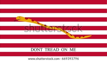 first navy jack flag of united