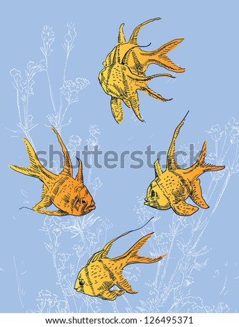 Fish - stock vector