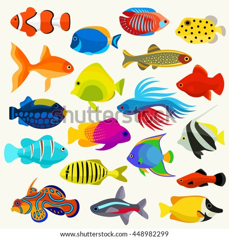 fish colorful vector set