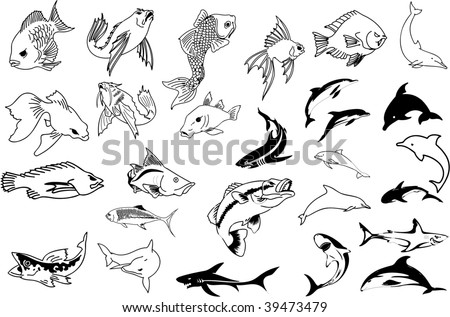 shark tattoo designs. goldfish. koi. shark. tattoo