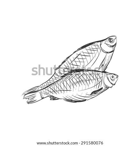fish doodle sketch  excellent