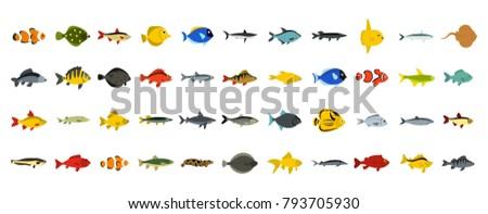 fish icon set flat set of fish