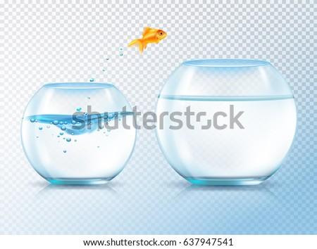 fish jumping out bowl