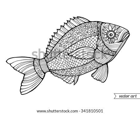 fish  ornamental graphic fish