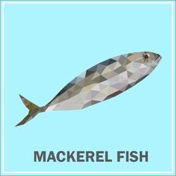 fish polygon vector, mackerel fish
