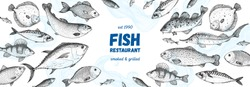 Fish sketch collection. Hand drawn vector illustration. Seafood frame. Food menu illustration. Hand drawn tuna, flounder, cod fish, herring, rainbow trout, mackerel, salmon, perch. Engraved style