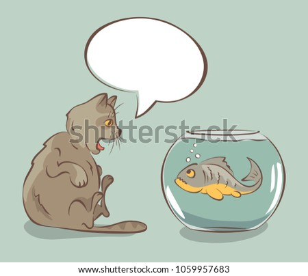 fish    the best gift for a cat