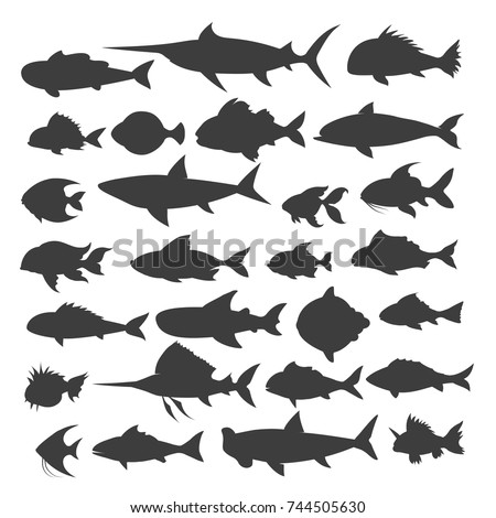 Fishes silhouettes. Fish of different shapes isolated on white background, vector illustration