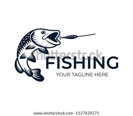 fishing  fish pike attack