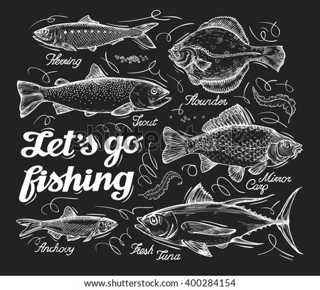 Fishing. Hand drawn sketch fish, herring, trout, flounder, carp, tuna, sprat. Vector illustration