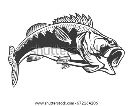 Free Bass Fish Vector Download Free Vector Art Stock Graphics