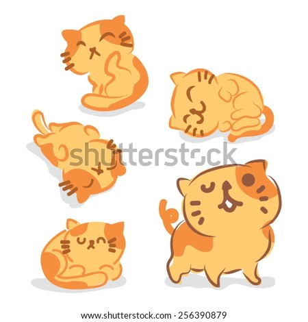 five cute cats for vector