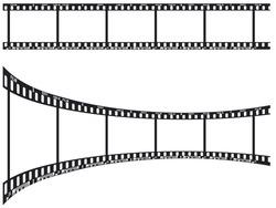 Five frames of the negative film