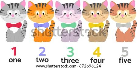 five pretty cats different
