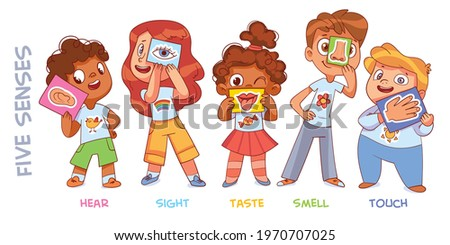Five senses. Sight, hear, smell, taste, touch. Colorful cartoon characters. Funny vector illustration. Isolated on white background
