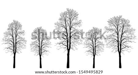five trees of different colors