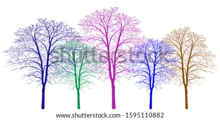 Five trees of different colors. Trees without leaves. Bare tree trunks with branches without leaves. Trees on a white background. Large plants for decoration. Many branches without leaves.