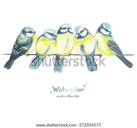 five watercolor blue tits ...