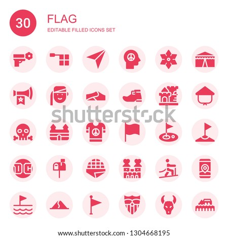 flag icon set collection of 30