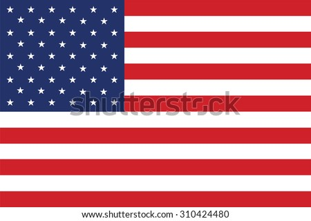 Flag of the United States. Vector illustration. #310424480