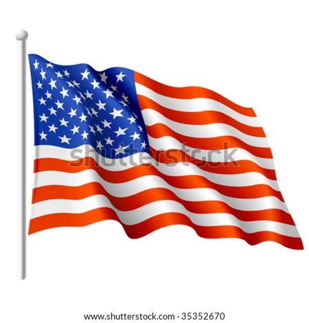 Flag of the USA. Vector.