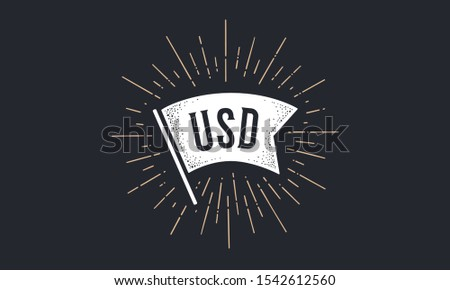 Flag USD. Old school flag banner with text USD. Ribbon flag in vintage style with linear drawing light rays, sunburst and rays of sun, text usd, dollar. Hand drawn design element. Vector Illustration