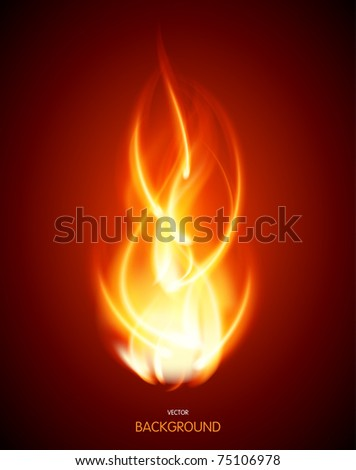 stock vector   flame of fire