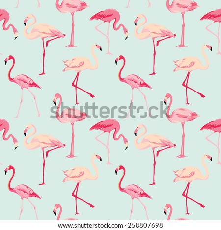 flamingo bird background
