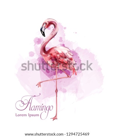 flamingo in watercolor isolated