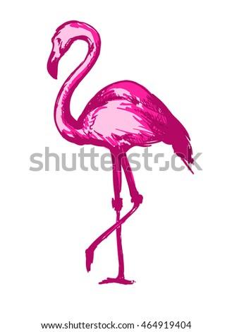 royalty free watercolor flamingos 304751813 stock photo. Black Bedroom Furniture Sets. Home Design Ideas