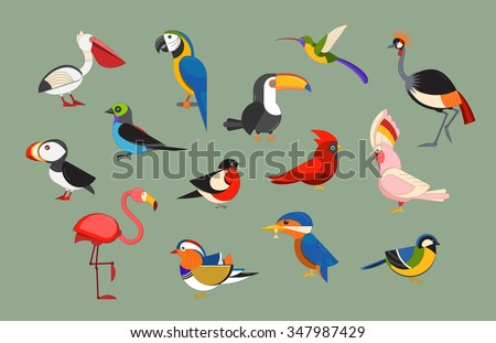 Flat design vector birds icon set. Cartoon bird collection. Popular birding species icons. Exotic bird line art set
