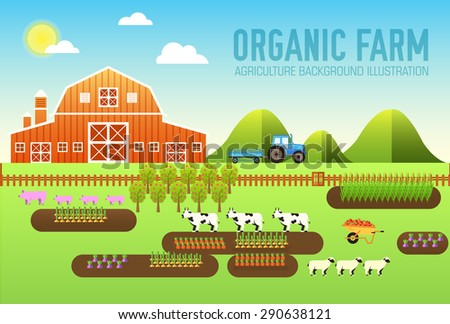 flat farm in village set