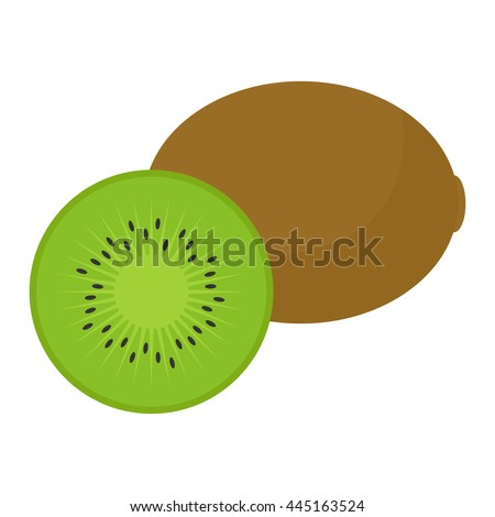 flat icon kiwi and slice of