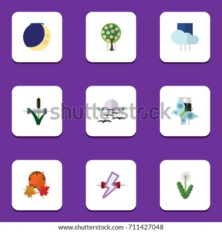 Flat Icon Nature Set Of Overcast, Floral, Cattail And Other Vector Objects. Also Includes Overcast, Maple, Garden Elements.
