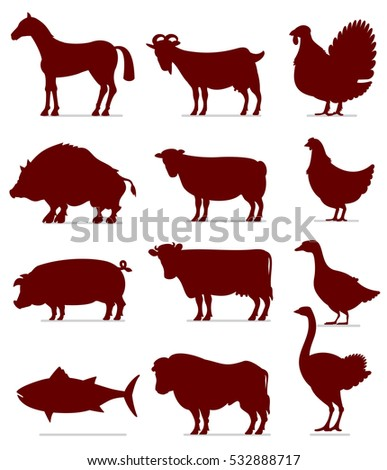 Flat Icons of Meat Animals. Ready for Your Text and Design.