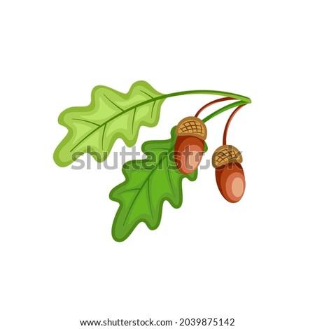 flat illustration of branch of