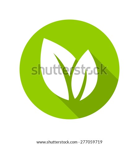 Flat leaves icons. Vector illustration.