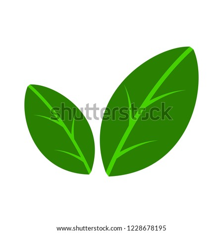 Flat leaves icons. Vector illustration. Abstract Leaf Logo design vector template