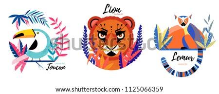 flat lion  lemur toucan  in