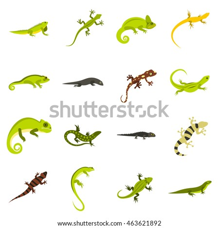 flat lizard icons set
