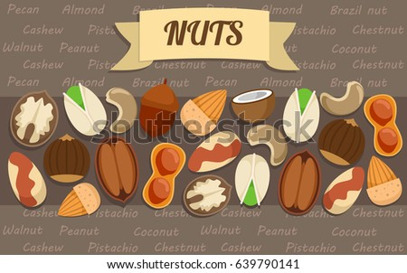 Flat nuts elements collection with brazil peanut almond walnut pistachio chestnut cashew pecan acorn coconut sorts vector illustration