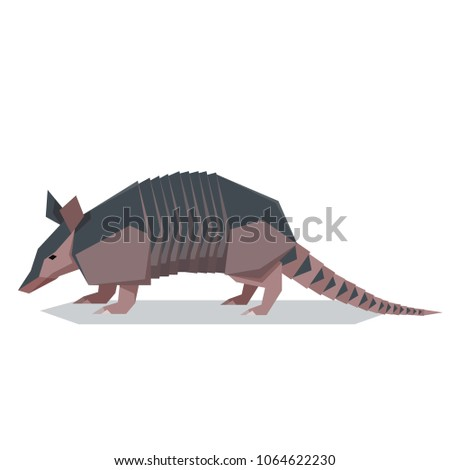 Flat polygonal Nine-banded armadillo