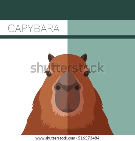 flat postcard with capybara