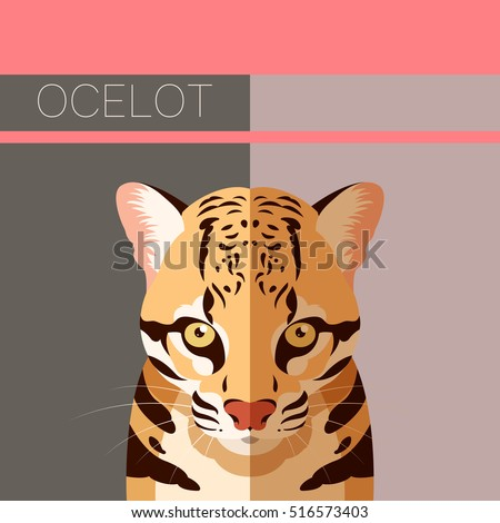 flat postcard with ocelot
