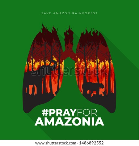"""Flat Poster """"Pray For Amazonia"""" illustrated with lungs and forest fires vector"""